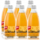 6 bottles of CAPI Flamin' Ginger Beer Premium Craft Soda