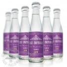 东帝旧世界汤力水(6瓶)